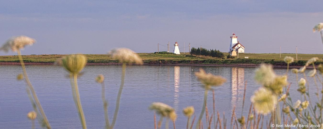 Lighthouses & Wine