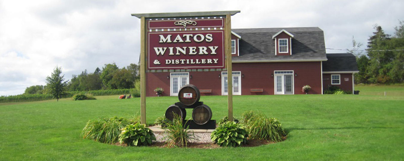 Matos Winery & Distillery Tour